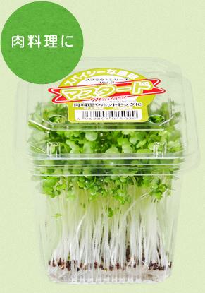 栄養満点の発芽野菜 スプラウトシリーズ|村上農園 の商品