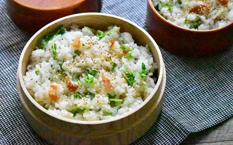 豆苗と梅干しの炊き込みご飯