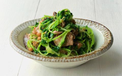 豆苗のサバ缶納豆サラダ