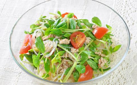豆苗と春雨のエスニック風サラダ
