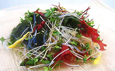 春雨とスプラウトの海藻サラダ