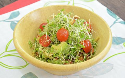 ブロッコリー スーパースプラウトのナッツサラダ
