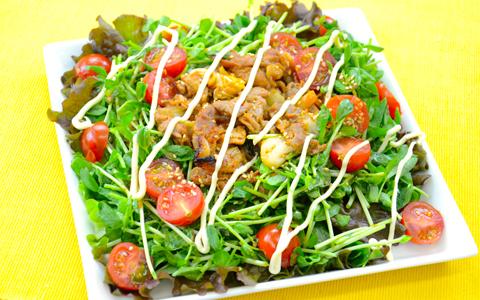 豆苗のスタミナ焼肉サラダ