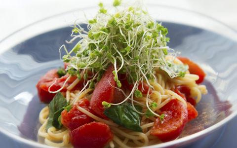 スプラウトとトマトの冷製パスタ