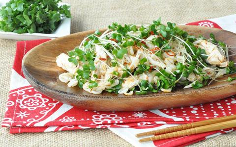 スプラウトと蒸し鶏の押し麦サラダ